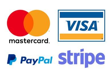 modalità pagamenti carta credito paypal stripe visa